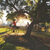 Brisbane Bike Tours